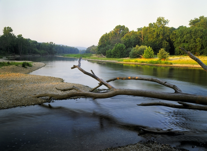 Take Action--The Illinois River is Threatened