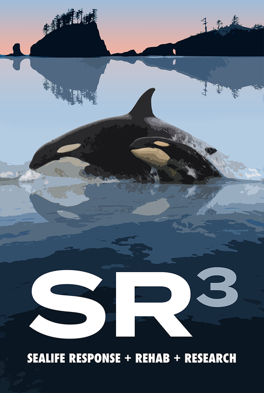 Announcing the Oklahoma Killer Whale Project